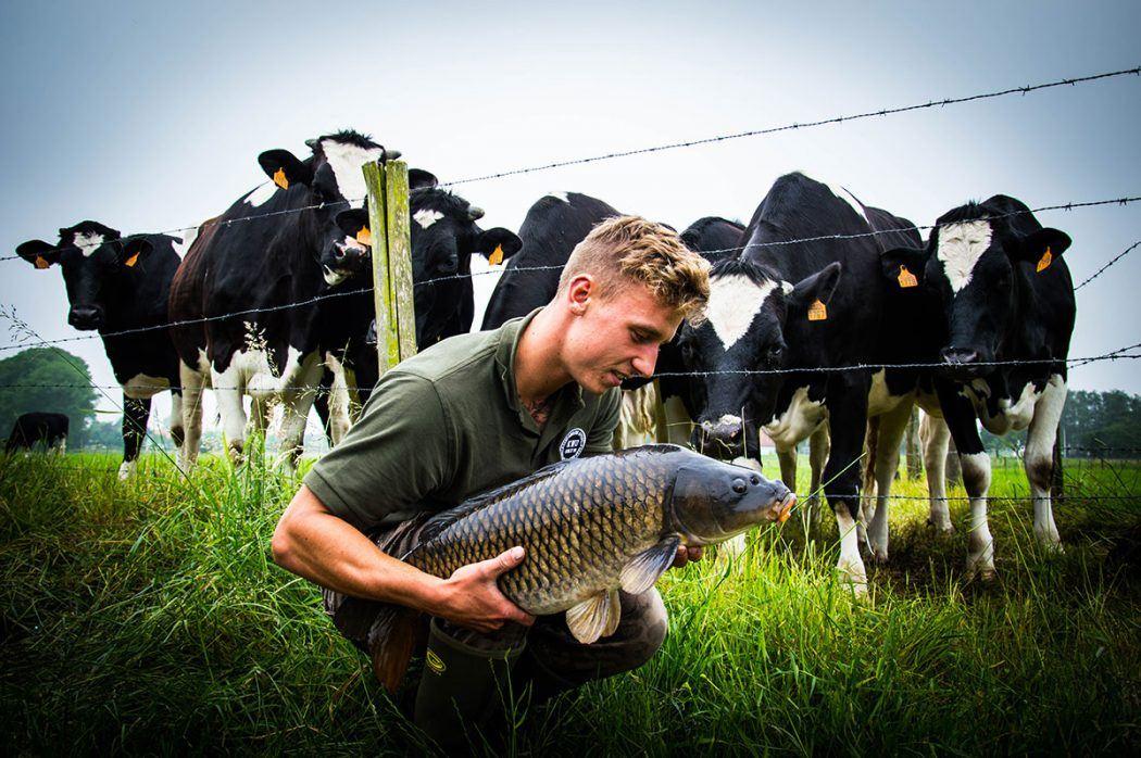 Top 10 Pics – Niels van Vooren