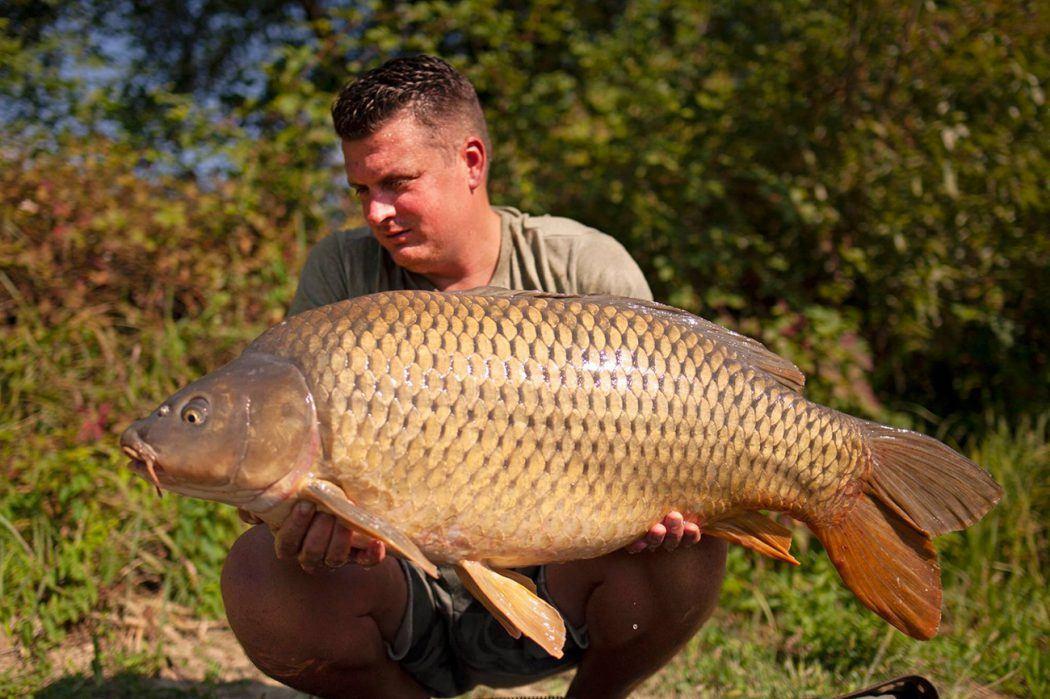 KWO Podcast #11 | Pieter van de Werfhorst over riviervissen, het vaderschap en werken in de hengelsport